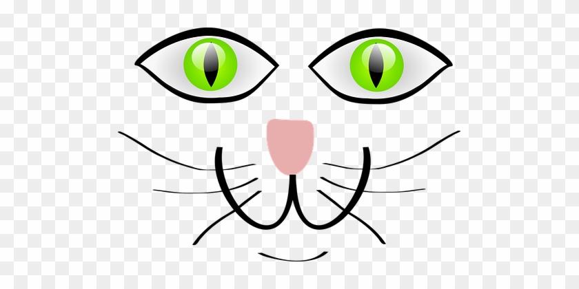 Cat Green Eyes Happy Animal Pet Funny Smil Cartoon Cat Face Png