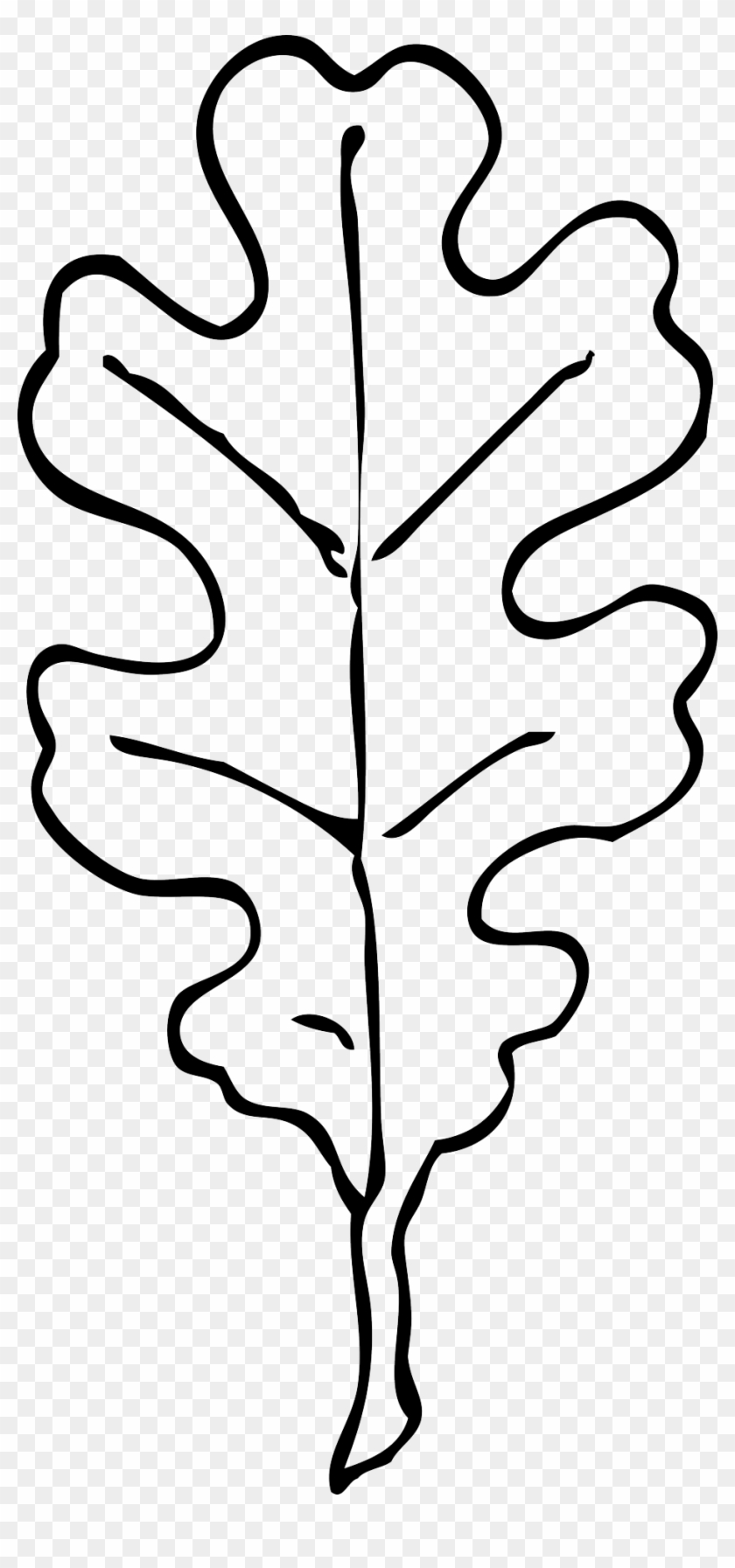 Oak Leaves Coloring Pages Oak Leaf Clip Art Free