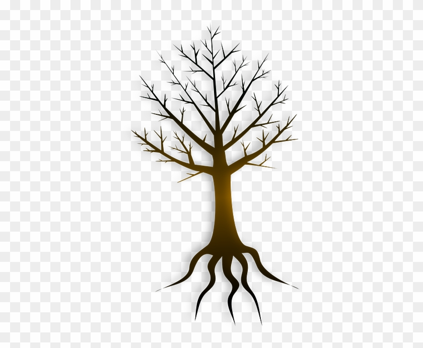 Roots Clipart Tree Trunk Akar Pohon Animasi Free Transparent Png