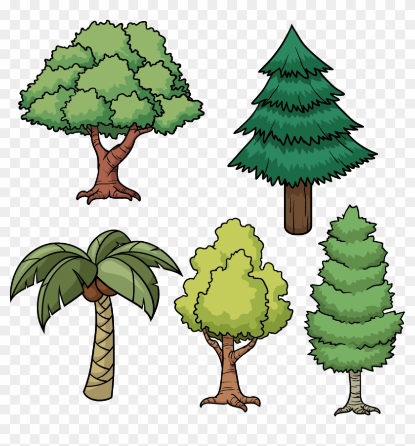 tree drawing cartoon pine cartoon picture of trees free