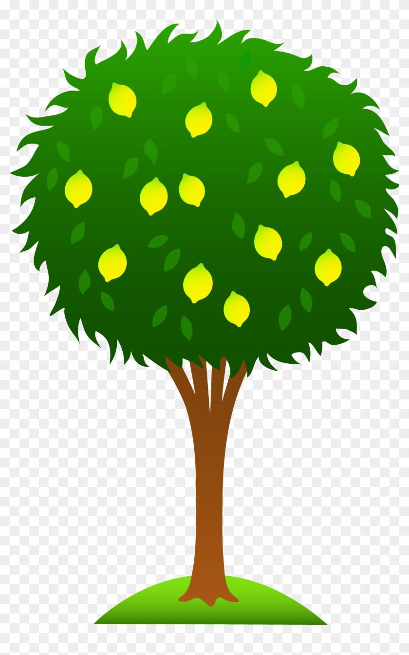 Sitting On A Lemon Tree - Lemon Tree Clip Art #1020607