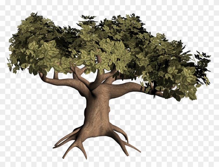Oak Tree With Roots Clip Art Download - Oak Tree #1021208