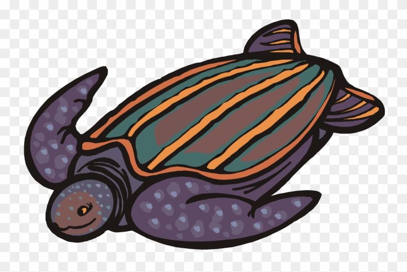 Turtle Clipart - Leatherback Sea Turtle Cartoon #178890
