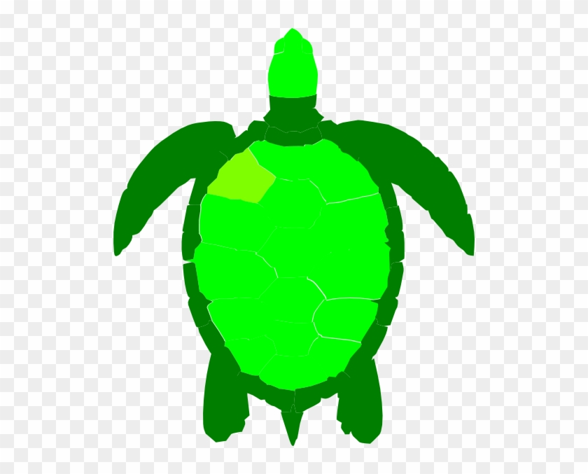 Sea Turtle Clipart - Turtle Clipart Birds Eye View #178899