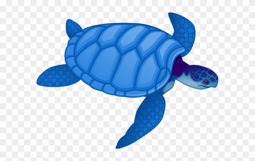 Free Sea Turtle Clipart Image - Sea Turtle Clip Art Blue #178973