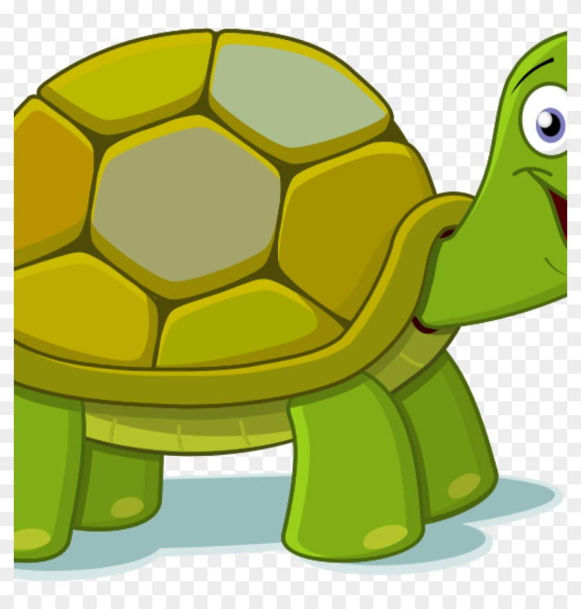 Turtle Clipart Free Free To Use Public Domain Turtle - Tortoise And Hare Clipart #178978