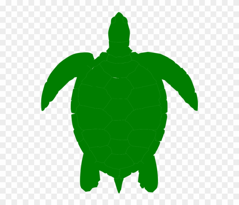 Turtle Shell Template Clipart Best Vdib2c Clipart - Green Sea Turtle Clip Art #179009