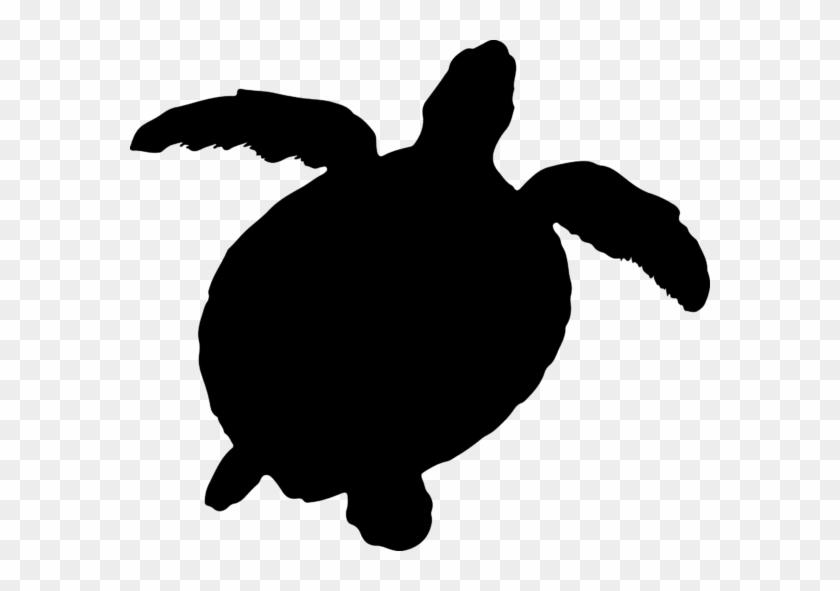 Tortoise Silhouette Graphic By Aparnastjp - Tortoise Silhouette #179064