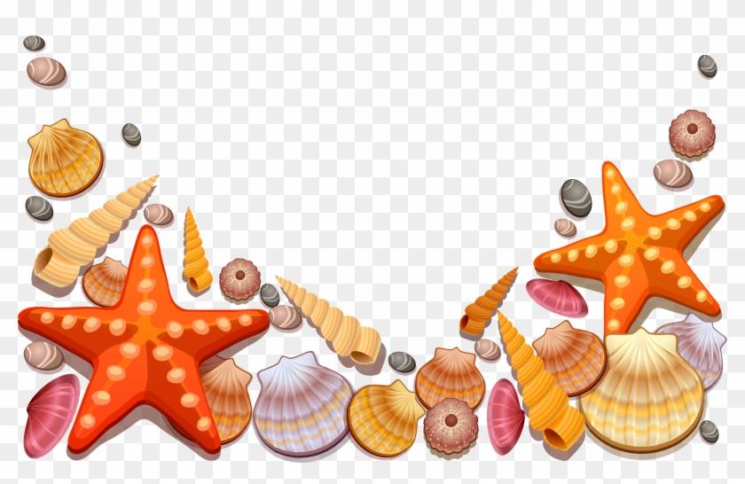 Sea Shells Decor Png Vector Clipart - Sea Shells Shower Curtain #179089