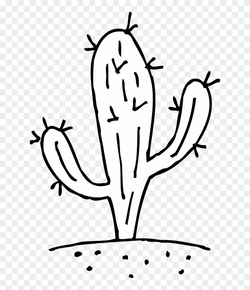 White Cactus And Black Clip Art - Cactus Black And White #179275