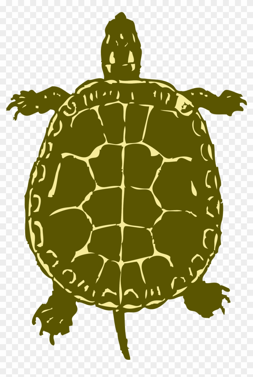 Sea Turtle Clipart Snapping Turtle - Turtle Bird Eye View #179283