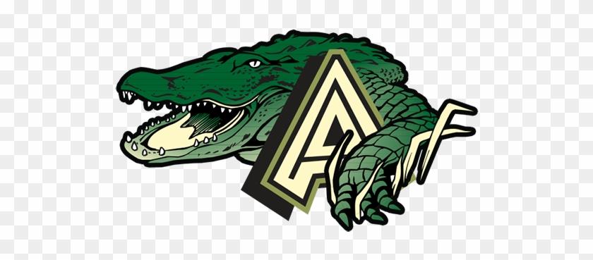 Logo - Alligator Logo #179298