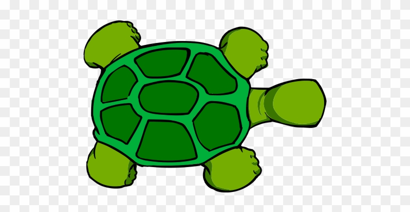 Cartoon Turtle Top View Free Transparent Png Clipart Images Download