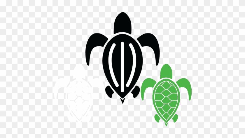Ocean Habitat Sponsor - Green Sea Turtle #179583