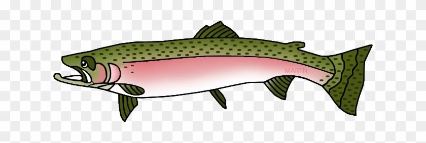 Steelhead Trout - Washington State Fish Clipart #180521