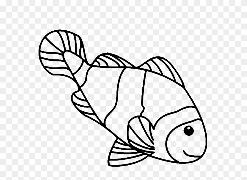 Fish Line Drawings - Coloring Page Clown Fish #180537