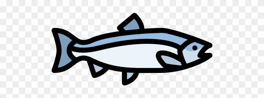 Salmon Free Icon - Icon Salmon #180551