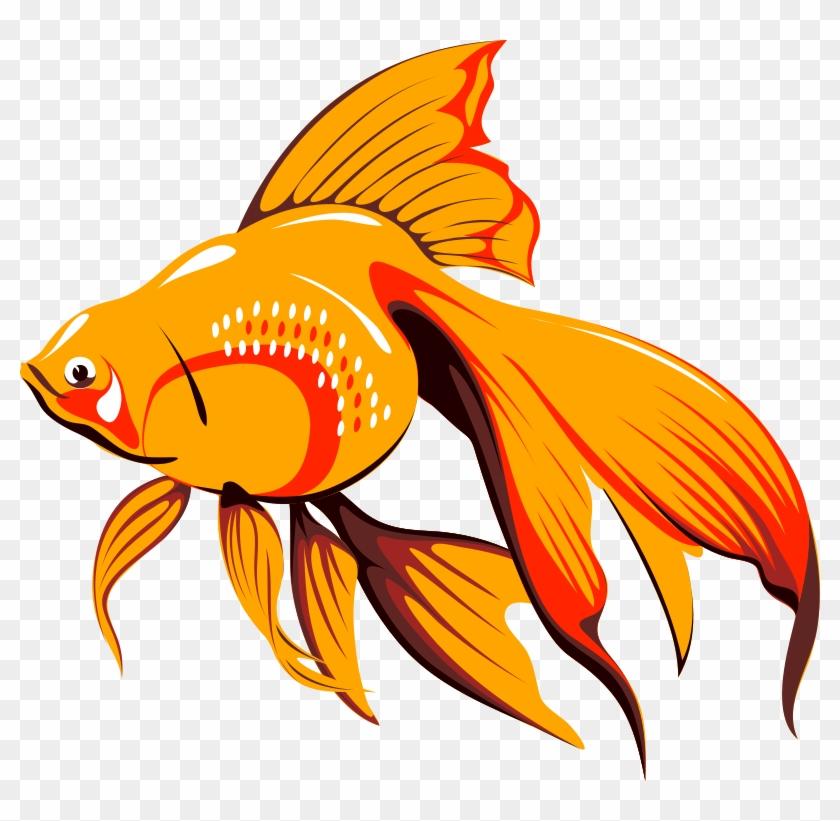 Fish Bait Free Architetto Pescetto - Golden Fish Clipart #180679