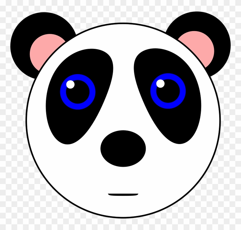 Panda Bear Animal Cute Black White Gambar Kartun Lucu Hitam