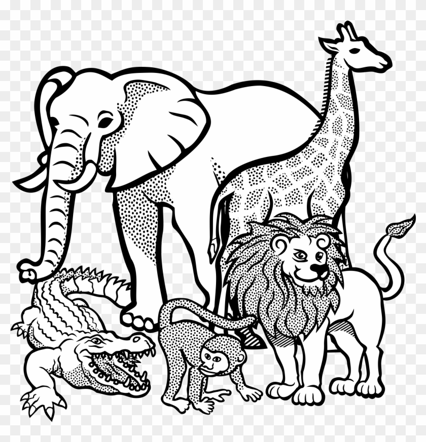 Clipart - Zoo Animals For Colouring #181914