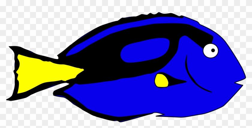 Cool Dory Clip Art - Blue Tang Fish Clipart #182319