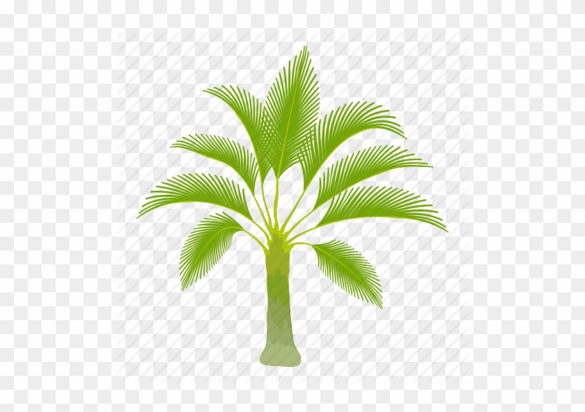Palm Trees Cartoon Palm Oil Tree Icon Free Transparent Png Clipart Images Download Most relevant best selling latest uploads. palm trees cartoon palm oil tree icon