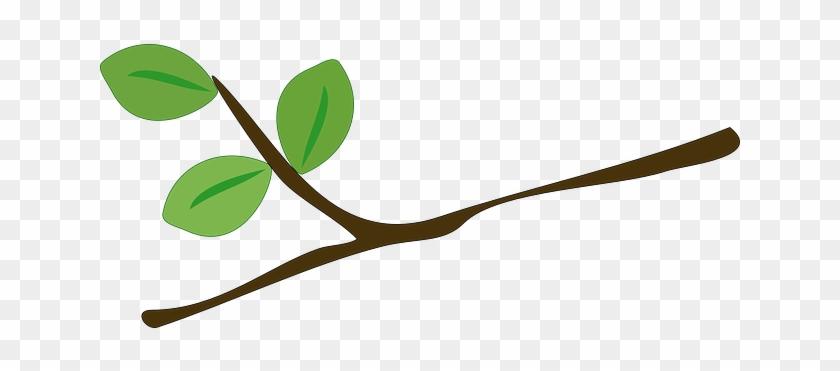 Arbol Con Ramas Animado: Hoja De Arbol Animada Para Colorear Una Hoja De árbol