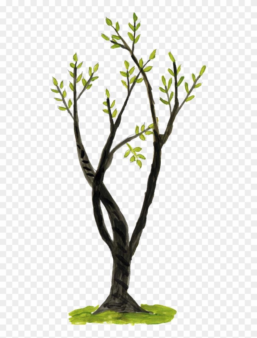1222 × 1400 Px - Twig #1028255