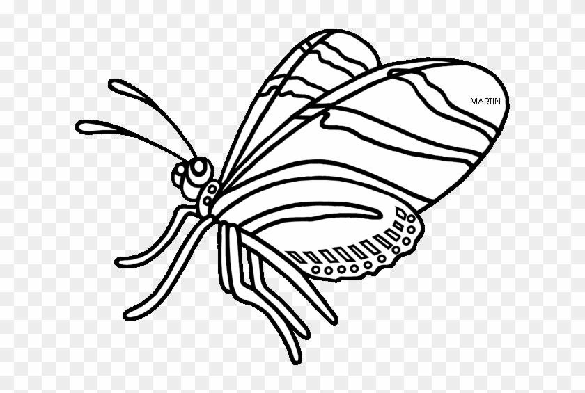 Butterfly Clipart Zebra