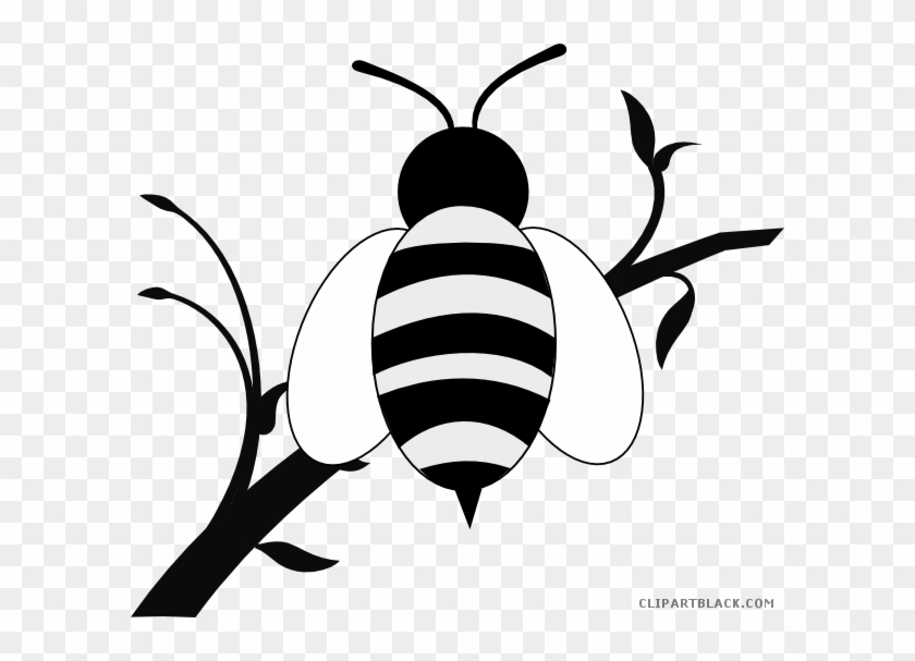 Honey Bee Animal Free Black White Clipart Images Clipartblack - Black And White Branch Of Tree Clipart #1033172