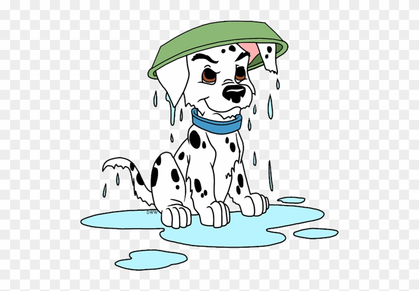 Puppy With Water Bowl On Head - 101 Dalmatas Para Colorear - Free ...