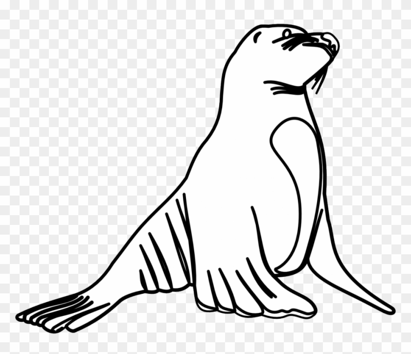 Sea Lion Coloring Pages Coloring Pages Amp Pictures - Sea Lions Black And White #1039618