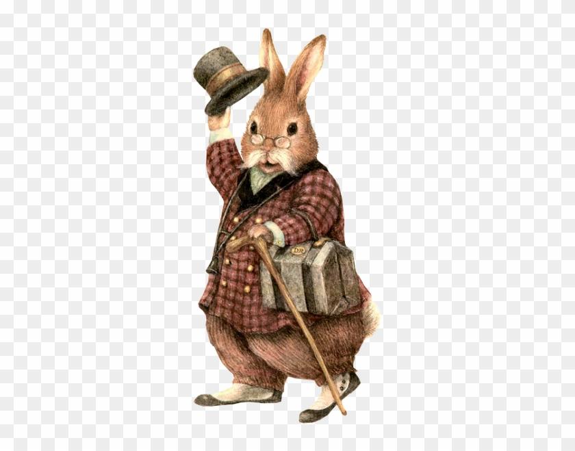 Blog De L'ile De Kahlan - Gentleman Rabbit #1039693