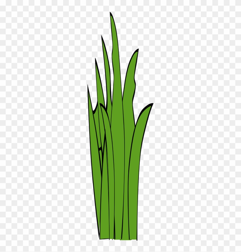 grass clip art free clipart panda free clipart images - 800×800