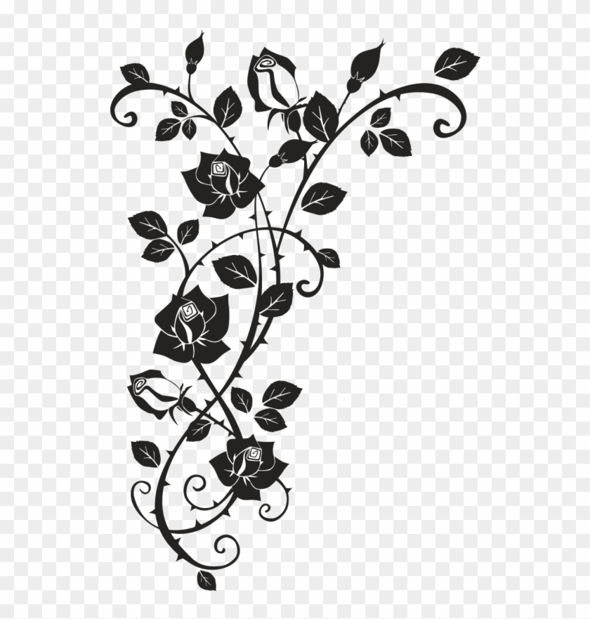 Thorns Spines And Prickles Rose Drawing Clip Art Dessin De