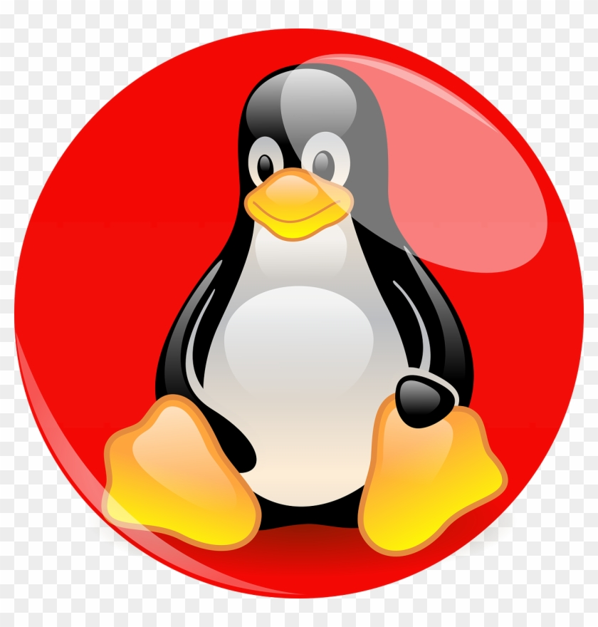 A Day In The Life Of Wilkes Barre Scranton Penguins - Transparent Linux Penguin Pointing Up #1046445