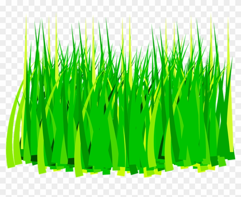 rumput png collection 59 free vector graphic agriculture grass clip art free transparent png clipart images download rumput png collection 59 free vector