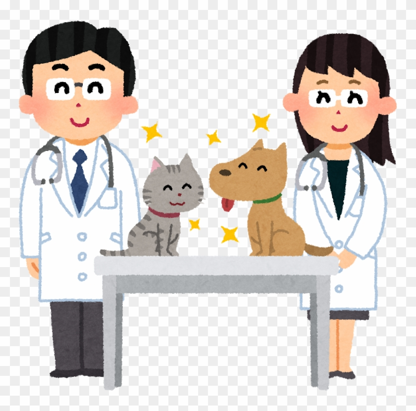 Hospital Veterinarian Caregiver 診療 Internal Medicine - Veterinary Physician #1054578