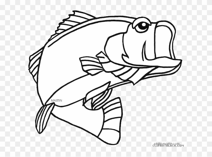 Bass Fish Animal Free Black White Clipart Images Clipartblack - Largemouth Bass  Coloring Page - Free Transparent PNG Clipart Images Download