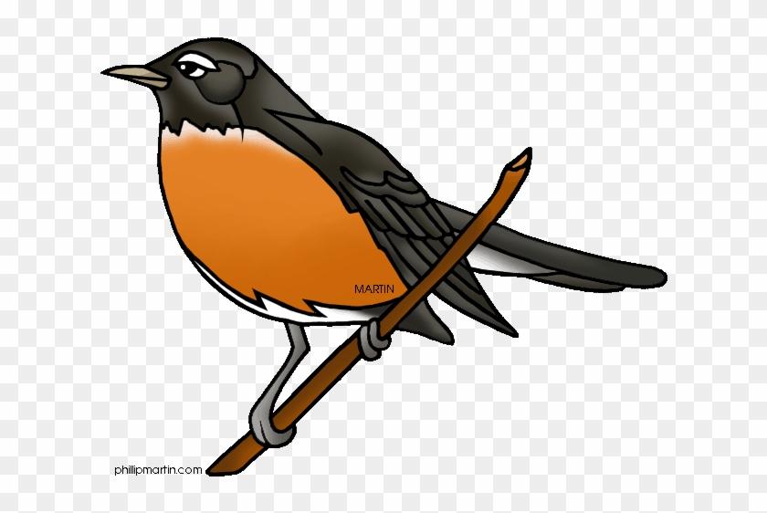 Robin Clip Art Clipart Panda - Robin Bird Clipart #1057968