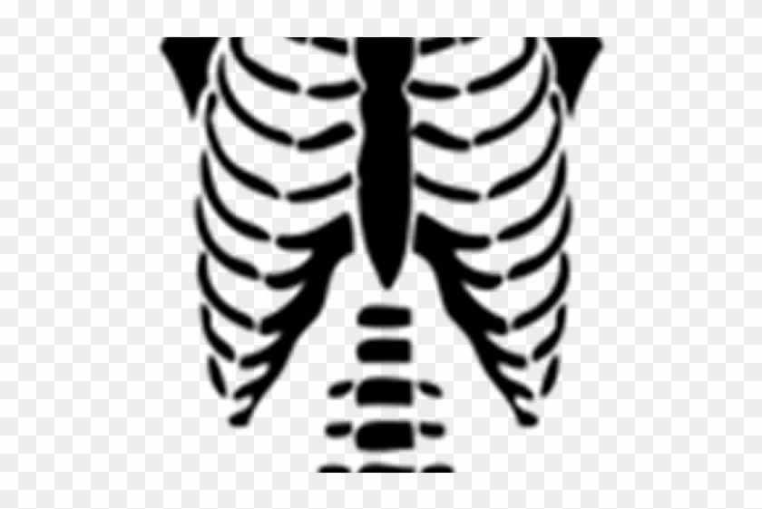 Skeleton Clipart Torso T Shirts For Roblox Free Transparent