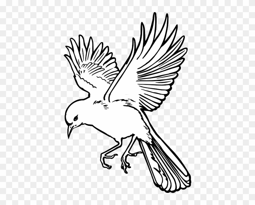 Peace Dove Clipart Burung Pencil And In Color Peace