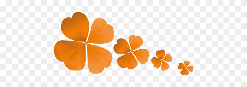 It Takes A Lot Of Effort, Preparation And Correct Timing - Orange Four Leaf Clover #1060260