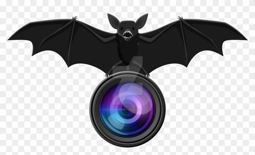 Adaleigh Faith Photography Logo By Adaleighfaith On Extreme Fliers Micro Drone Camera Module Hd 1280p X Free Transparent Png Clipart Images Download
