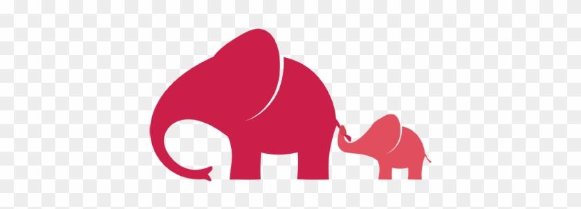 Indian Elephant #182503