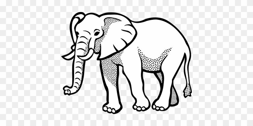 Pics Of Cartoon Elephants - Elephant Image Black And White #182543