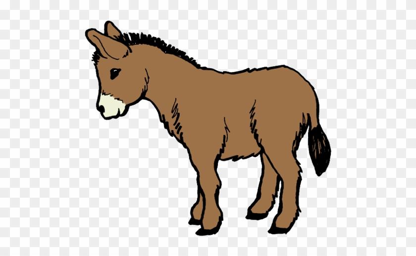 Donkey Clipart - Clipart Donkey #182728