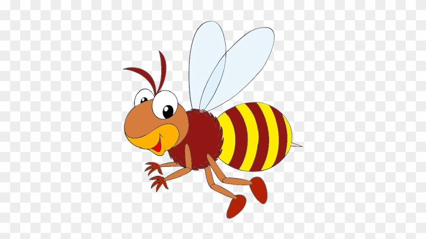 Clip Art - Life Cycle Of A Honey Bee #183423