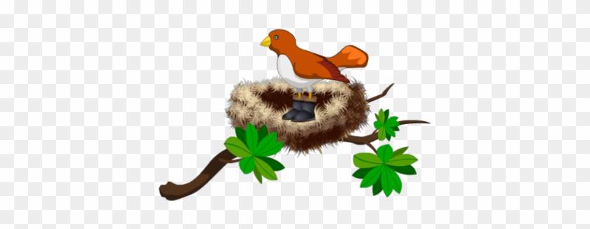 Bird In Nest - Cartoon Bird In Nest Png #183498