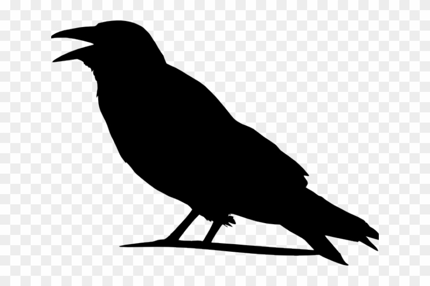 Crow Clip Art At Clker Com Vector Clip Art Online Royalty - Outline Images Of Crow #184062